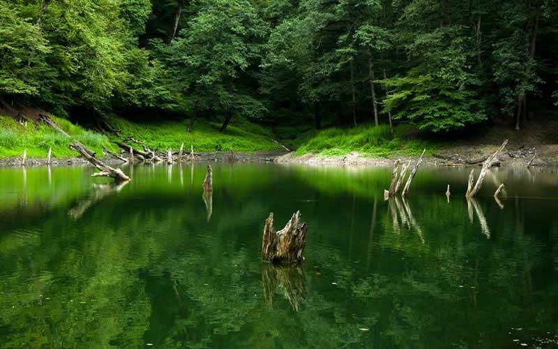 تجربه ی سفر به طبیعت بکر دریاچه ی چورت با خرید بلیط هواپیما ساری