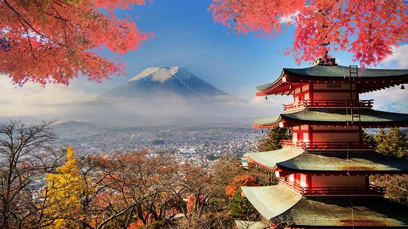 معرفی زیبا ترین جاذبه های گردشگری با خرید بلیط هواپیما توکیو
