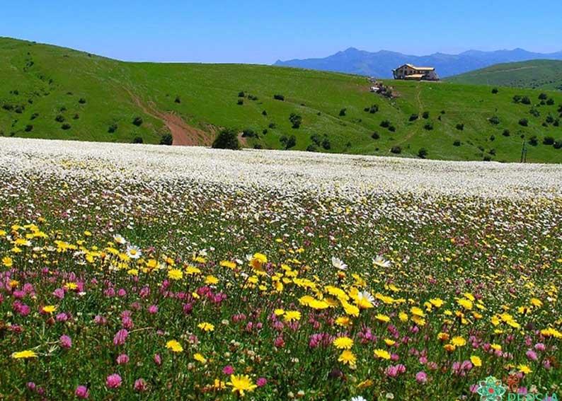 سفر به دل زیبایی ها و چشمه های آبگرم با خرید بلیط قطار سرعین