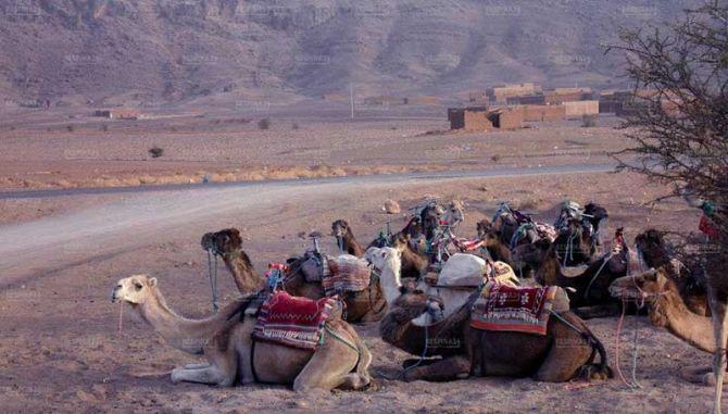 خرید بلیط رفت و برگشتی مراکش